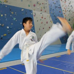 taekwon-do itf initiation strasbourg