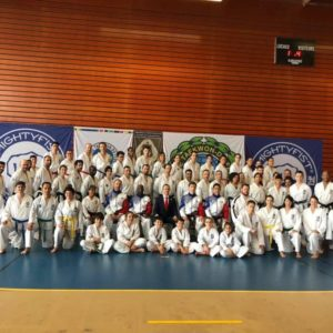 taekwon-do-itf-strasbourg-stage-national